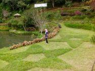 Taman Air Terjun Bukit Tunggul