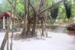 Taman Gua Maria