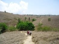 Hot Trekking Pulau Rinca