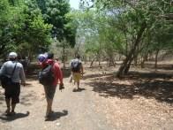 Trekking Pulau Rinca